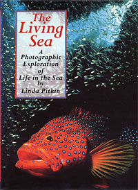 The Living Sea - a Photographic Exploration of Life in the Sea (1995) Fountain Press, Surrey, England.